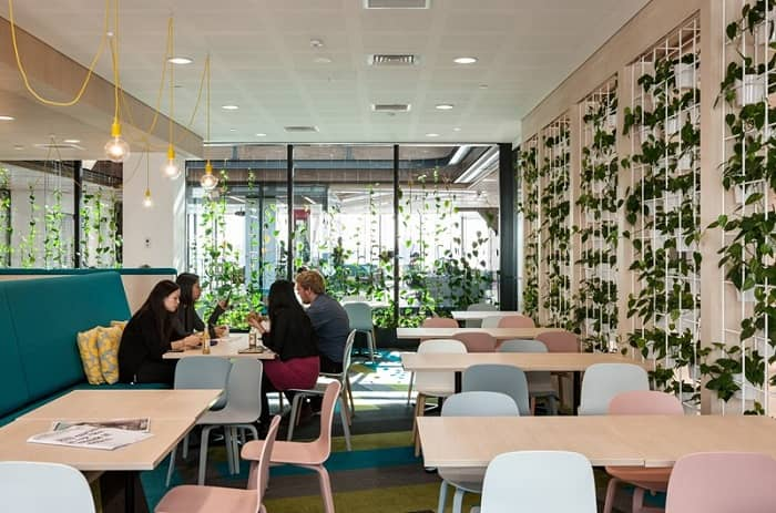 Different Ways to Make Your Restaurant More Appealing