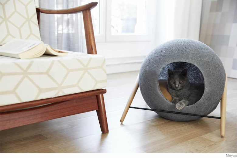 cute bed for your cat