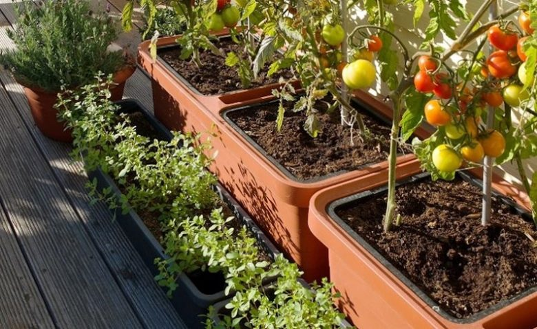 selfwatering planters in garden