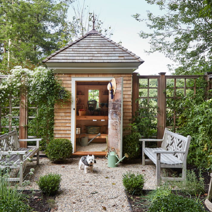 Wooden tall shed in backyard