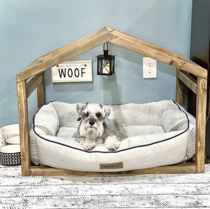 fluffy white dog in a dog bed
